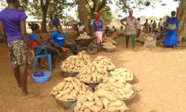 Welcome to Adeiyongo Market in Benue State