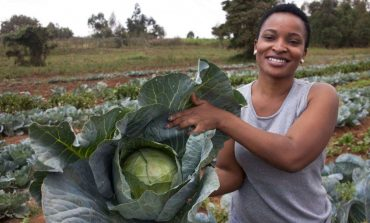 Africa Reality Show Draws Youth To Farming