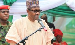 Buhari Says Ortom Couldn't Stomach What He Told Him