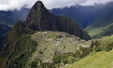 Peru To Plant One Million Trees